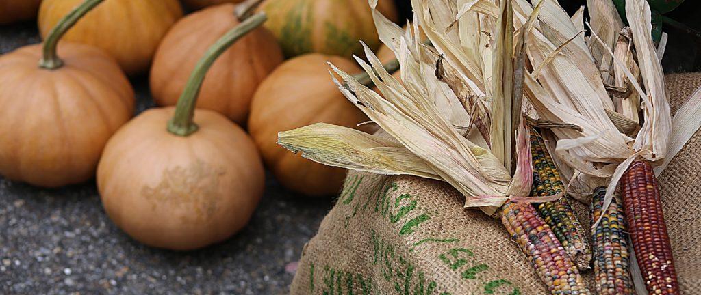 Pumpkins and jewel corn at a fall farmers market