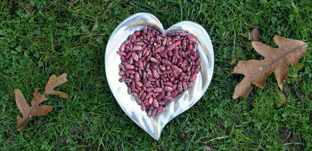 A heart-shaped bowl full of beans